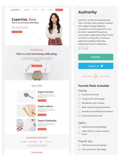 landing page examples authority template